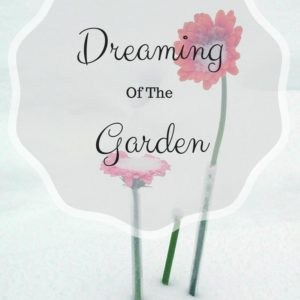 Dreaming of the Garden