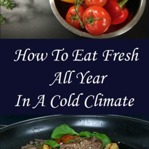 Live In A Cold Climate? How To Eat Fresh All Year Round
