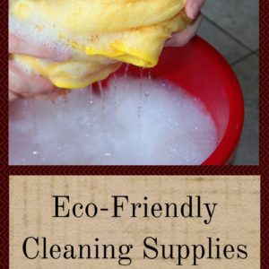 Eco-Friendly Cleaning Supplies That Are Cheap And Easy
