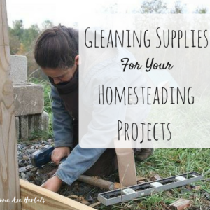 Gleaning Supplies For Your Homestead