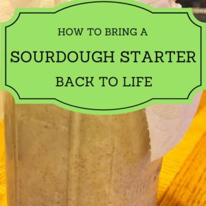 How to Bring a Sourdough Starter Back to Life