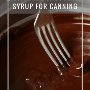 Chocolate Syrup For Canning [Recipe]