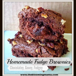 Homemade Fudge Brownies