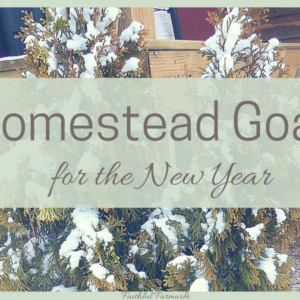 New Year Homestead Goals