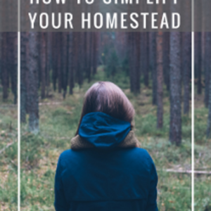 Simplifying Your Homestead