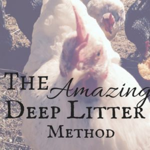 The Amazing Deep Litter Method!