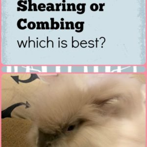 Plucking, Shearing or Combing