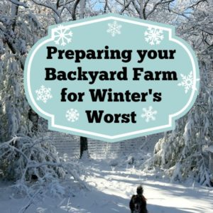 Preparing your Backyard Farm for Winter Weather