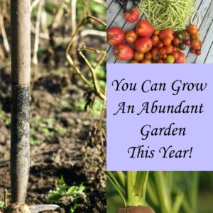 This Is The Year:  You Can Grow An Abundant Garden