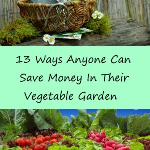 We Could All Use Help Saving Money In Our Gardens:  Here's Help