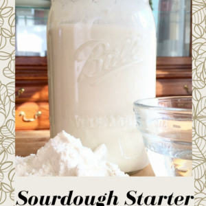 Sourdough Starter: It Can Be Done!!