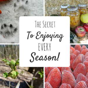 The Secret to Enjoying Every Season (Yes, Even Winter!)