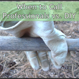 Should You DIY or Call a Professional?