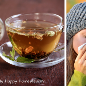 How to Make an Herbal Immune Boosting Tea