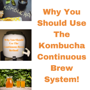 Why You Should Use The Kombucha Continuous Brew System!