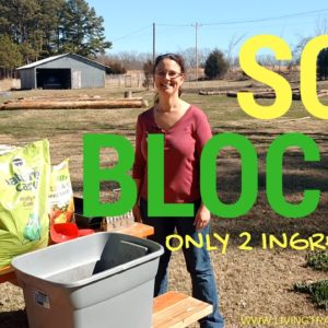 Easy 2-Ingredient Soil Blocks