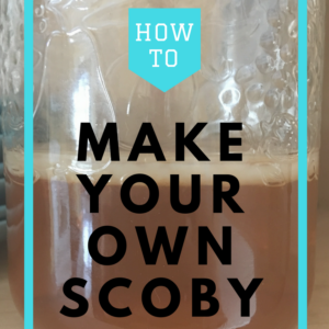 Grow your own SCOBY for endless Kombucha!