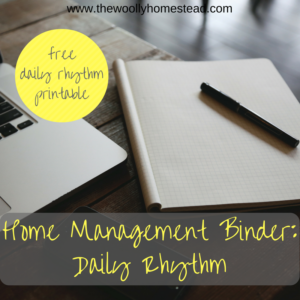 Home Management: Daily Rhythm