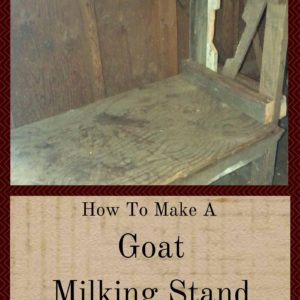 How To Make A Goat Milking Stand For Free Or Cheap