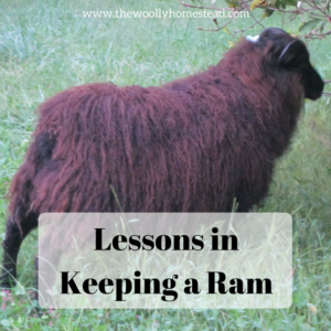 Lessons in Keeping a Ram