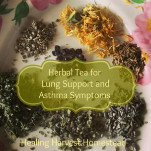 Herbal Tea for Lung Support and Asthma Symptoms