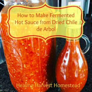 Make Fermented Hot Sauce with Dried Chile de Arbol Peppers