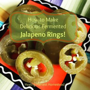 How to Make Fermented Jalapeño Pepper Rings