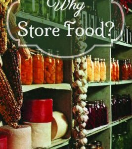 Why Store Food?