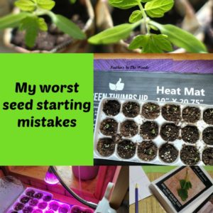 My 7 worst seed starting mistakes