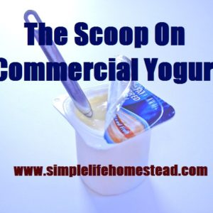 The Scoop on Commercial Yogurt