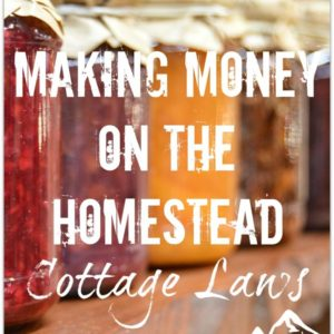 Making Money on the Homestead – Cottage Laws