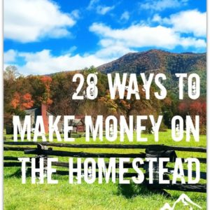 28 Ways to Make Money on the Homestead