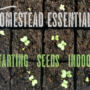 Homestead Essentials: Starting Seeds Indoors