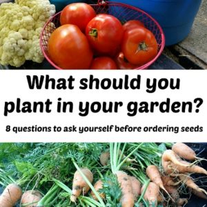 What should you plant in your garden?