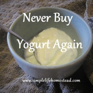 Never Buy Yogurt Again