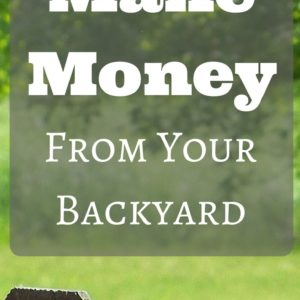 52 Ways To Make Money Homesteading | Making A Profit From Your Backyard