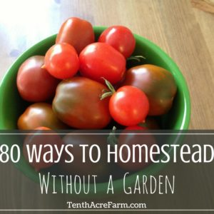 80 Ways to Homestead Without a Garden