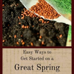 Easy Ways To Get Started On a Great Spring Garden
