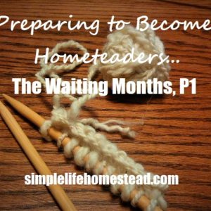 Preparing to become Homesteaders: The Waiting Months, Part 1