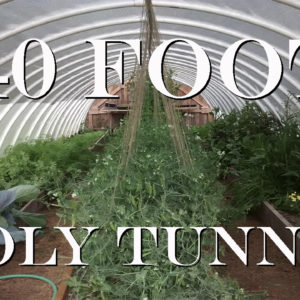 DIY 40 Foot Poly Tunnel / Hoop House