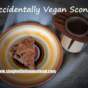 Accidentally Vegan Scones