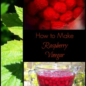 Raspberry Vinegar with Honey