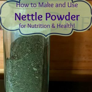 Making & Using Nettle Powder for Nutrition and Health