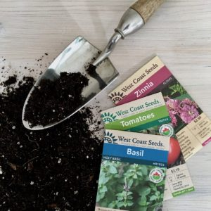 Seed-Starting Guide: How to Grow Your Own Seedlings
