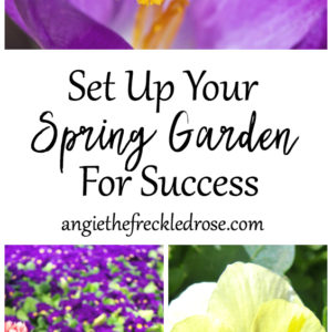 Set Up Your Spring Garden for Success