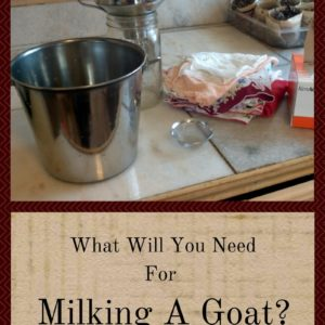 What Will You Need For Milking A Goat?