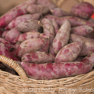 Grow Sweet Potatoes and Have the Best Harvest Ever