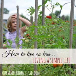 How to Live on Less