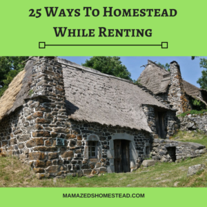 You Can Homestead While Renting
