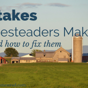 Common Mistakes Homesteaders Make
